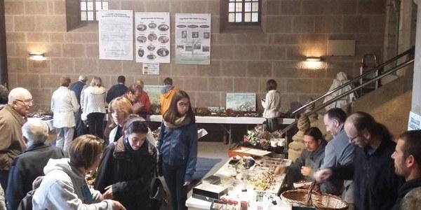 Bona participació en la Exposició de Bolets i la Sortida Micològica