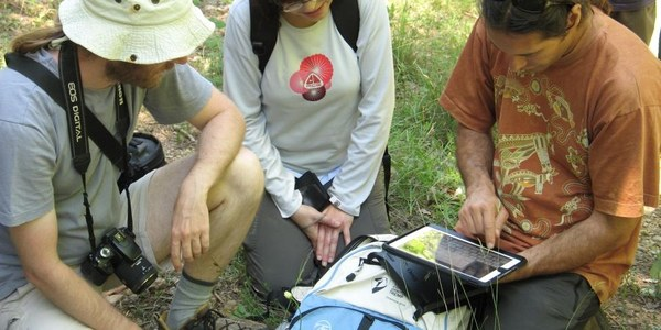 Èxit de participació a la sortida d'orquídies