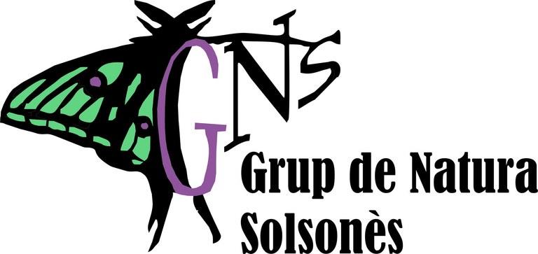 logo GNS_2020-color.jpg